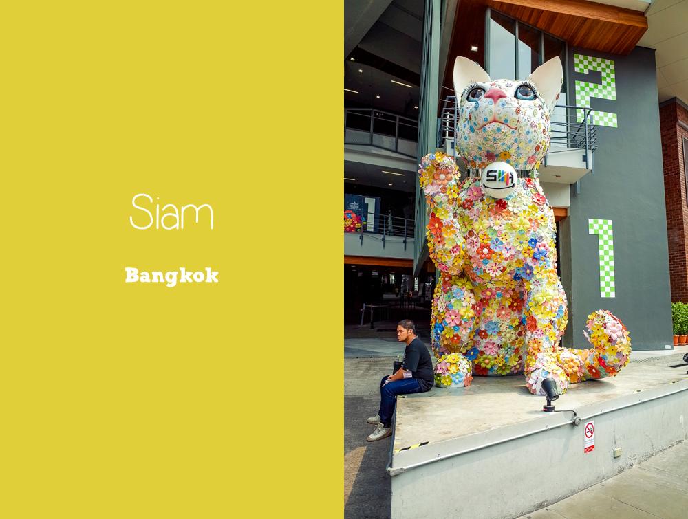 Siam Cat Bangkok