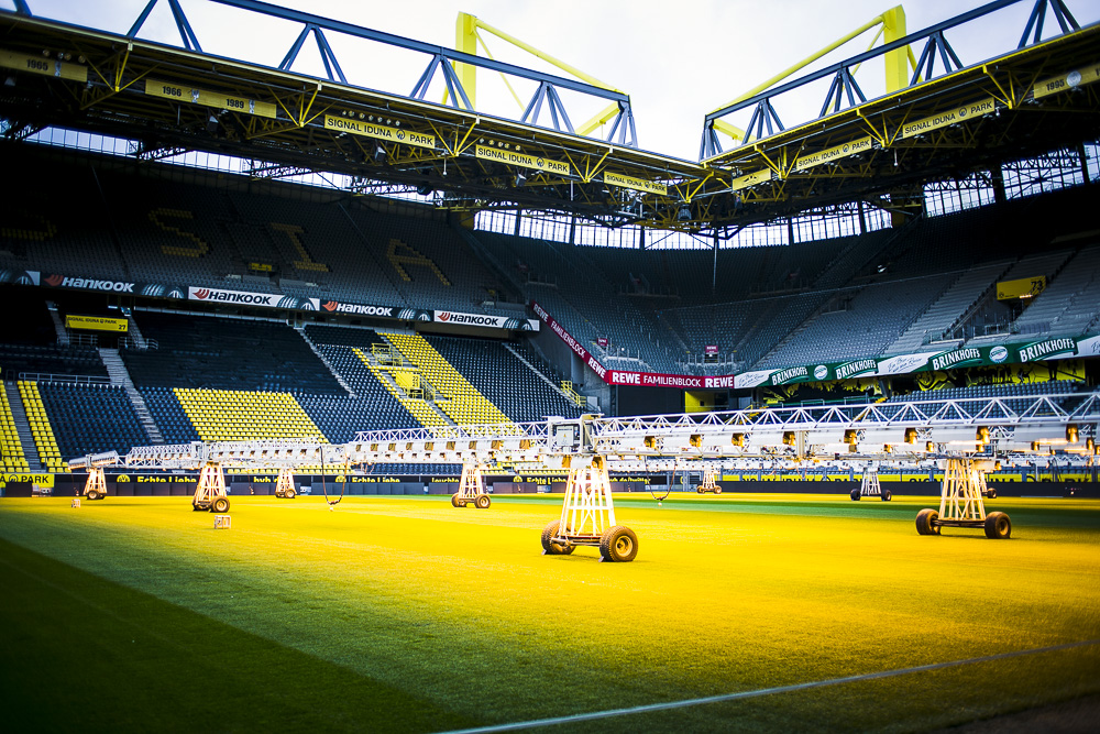 unsere bvb stadiontour im signal iduna park in dortmund. Black Bedroom Furniture Sets. Home Design Ideas