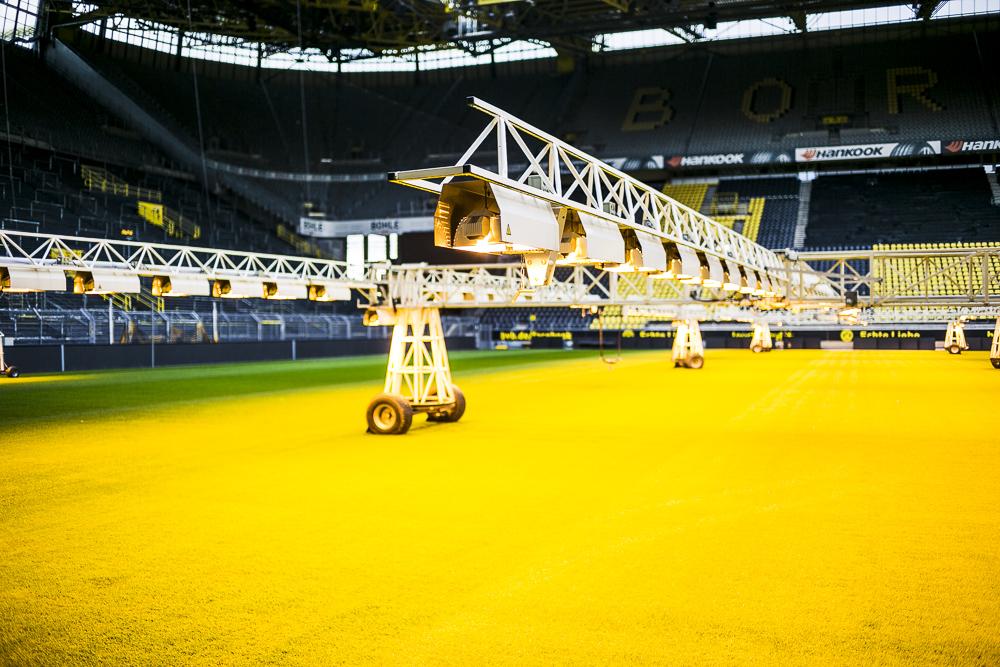 Private BVB Stadiontour im Signal Iduna Park in Dortmund